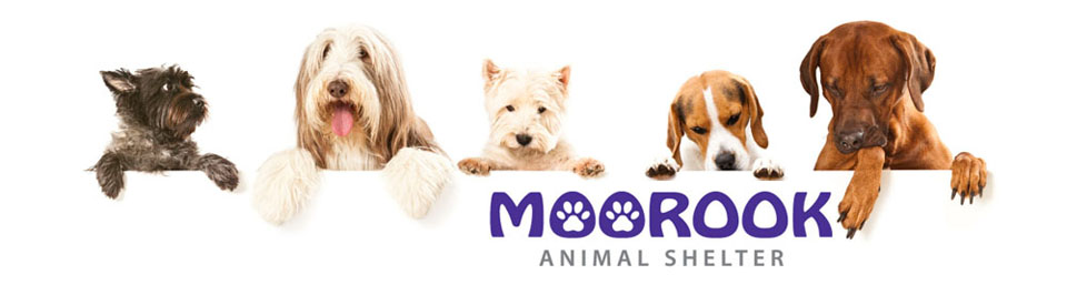 Moorook Animal Shelter